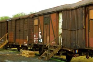 PATATERS Güterwaggon